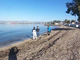 Καθαρισμοί και Περιποίηση Πρασίνου στη Παραλία Ασπροπύργου