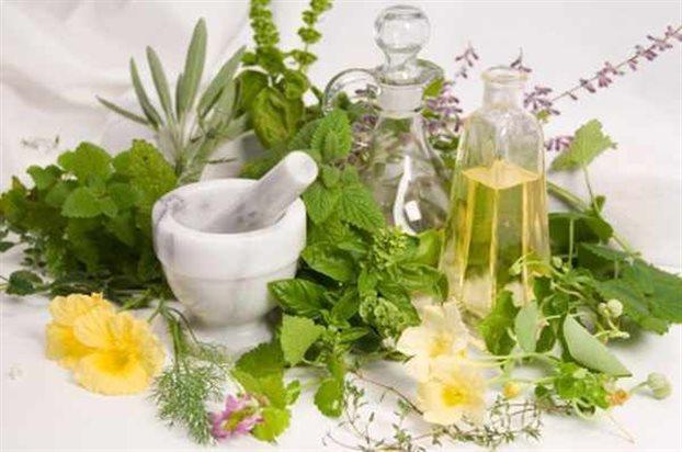 ΓΙΑΝΝΕΝΑ-Εκδήλωση για τα Φαρμακευτικά Φυτά